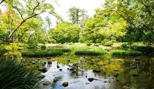 緑を楽しむ初夏の京都 マイナスイオンたっぷり南禅寺水路閣を歩く